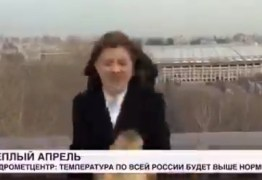 Cachorro rouba microfone de repórter ao vivo em jornal e vídeo viraliza; VEJA