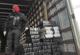 Cerca de 620 kg de drogas são apreendidas durante operação da PM e PF, na PB