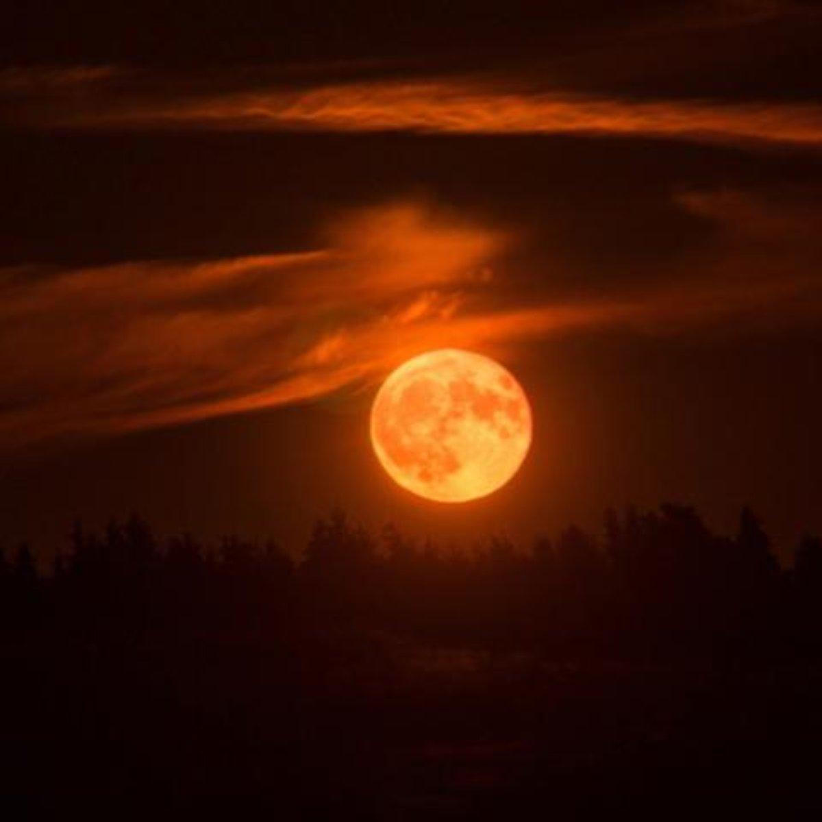 """1158333218 lua de sangue 17569 - Tabloide inglês prevê fim do mundo com """"superlua de sangue"""" nesta quarta, 26"""