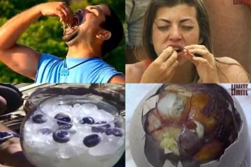 provadacomidanolimite - Olho de cabra e cérebro de bode em 'No Limite': O que acontece quando comemos pratos 'exóticos'