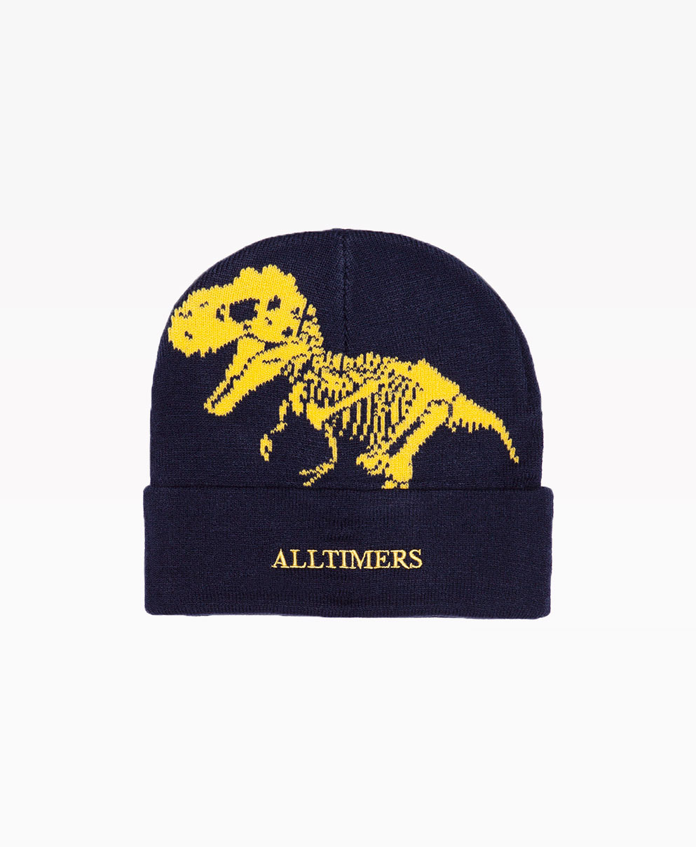 Alltimers Nh Beanie Black Front