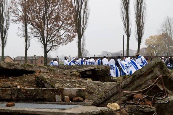 Auschwitz (11)