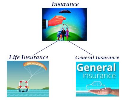 Insurance Architecture