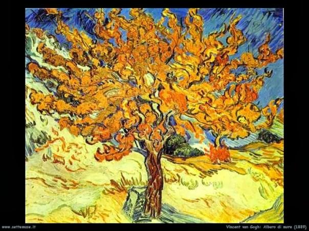 vincent_van_gogh_168_albero_di_more_1889