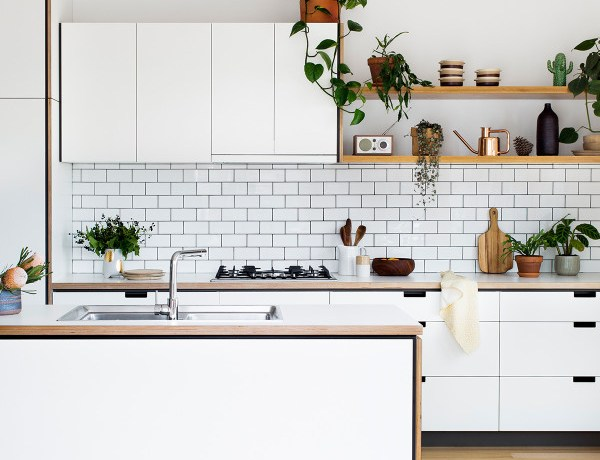 Tidy Tuesday || What to Keep on your Kitchen Counter