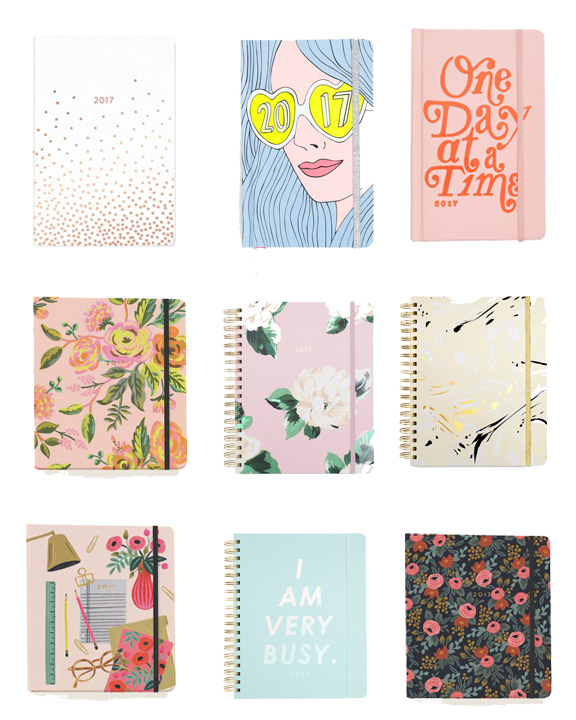 Best Planners for 2016-2017 // www.polishedclosets.com