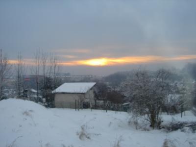 Podgorze garden winter