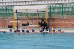 Cus Messina - Polisportiva Messina Under 15 - 02-04-2017 - 11
