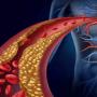 Χοληστερόλη : Πώς τη χρησιμοποιεί ο οργανισμός – Πότε υπάρχει πρόβλημα