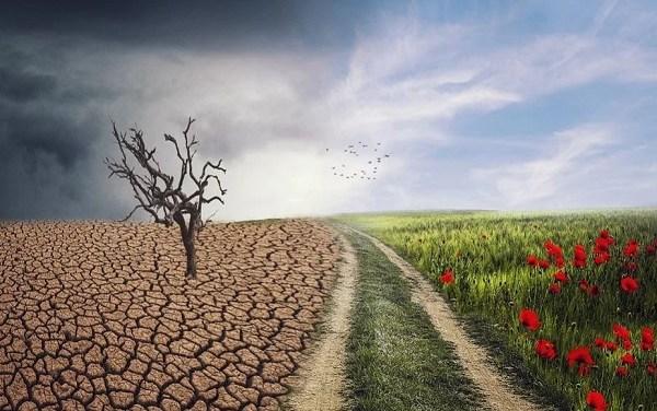 La difesa dell'ambiente e il principio di responsabilità – di Antonietta Rubiconto