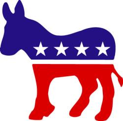 Democratic divides