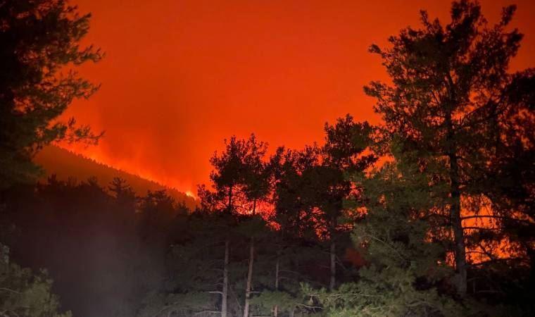 Tunceli'deki yangın kontrol altına alındı | PolitikYol Haber Sitesi