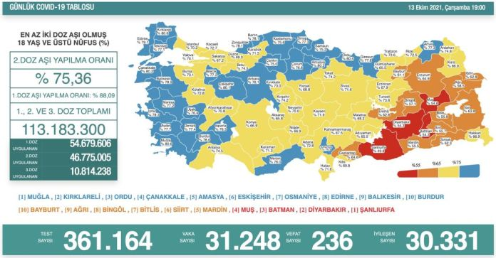 Türkiye'de koronavirüs nedeniyle son 24 saatte 236 kişi hayatını kaybetti, tespit edilen vaka sayısı 31 bin 248 oldu