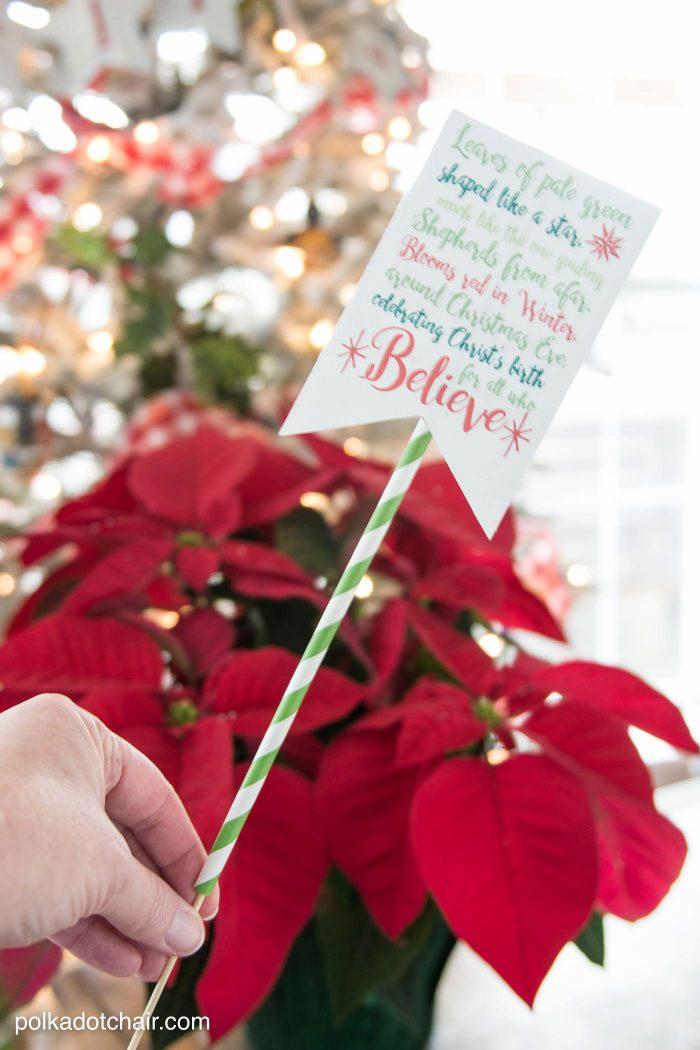 Poinsettia Christmas Neighbor Gift Ideas The Polka Dot Chair