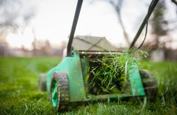 Grass-Cutting-Service-in-Lahore