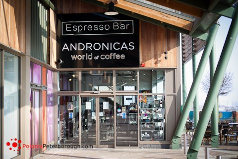 Andronicas Art Gallery and Cafee