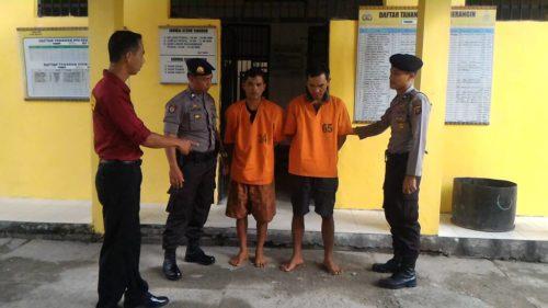 Polisi Tangkap Dua Pelaku Pencurian Kulit Kayu Manis