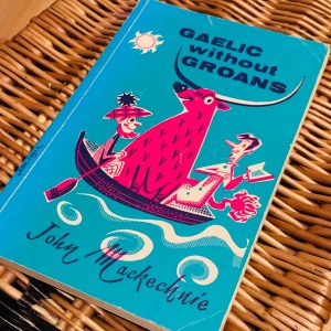 John MacKechnie's Gaelic without Groans - a quirky joy from the cover to its contents!