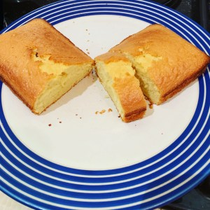 A simple sponge cake on a plate with a blue rim pattern