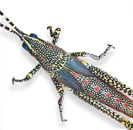 Debbie Jackson captures a grasshopper in a glorious brooch on PolymerClayDaily.com