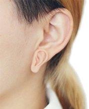 little ear