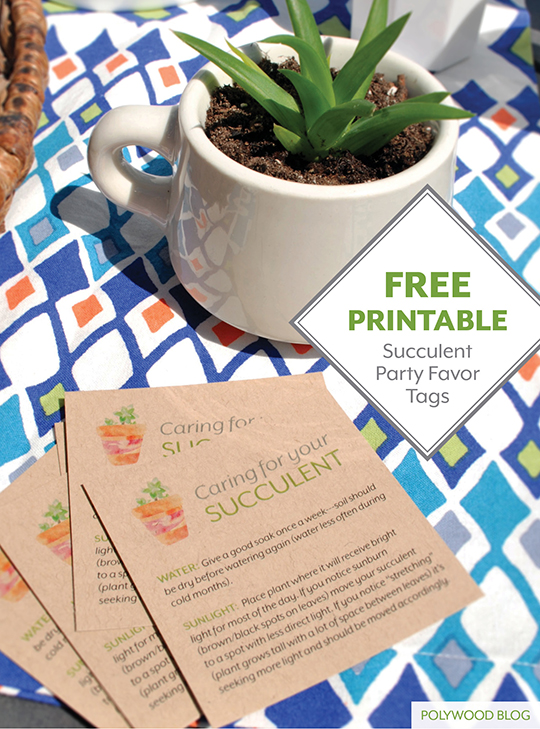 Free Printable for Eco-Friendly Party Favors from POLYWOOD Blog