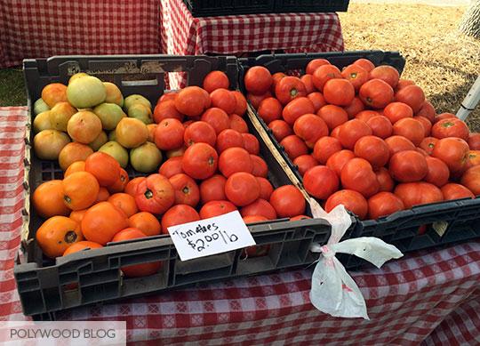 Tomatoes-Daniel-Island-Farmers-Market-POLYWOOD-Blog_540