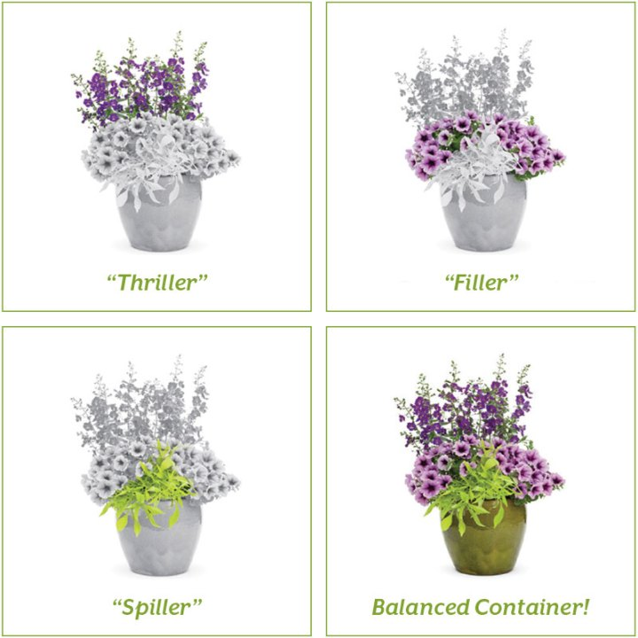 DIY-Potted-Containers-POLYWOOD