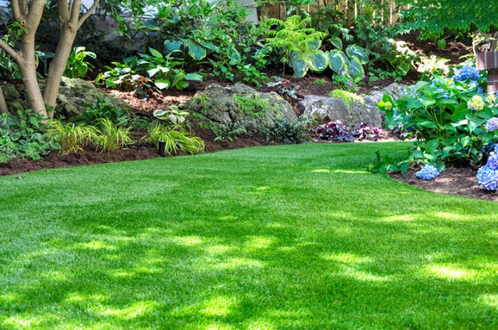 Gardening Tips For A Shaded Backyard Polywood Blog