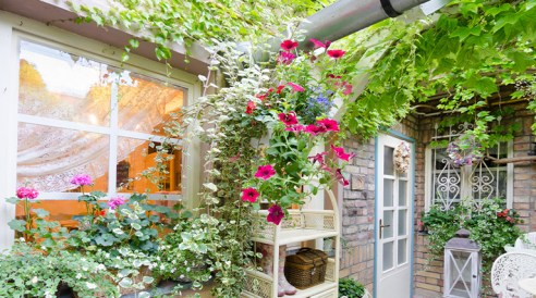Hang plants and flowers outdoors