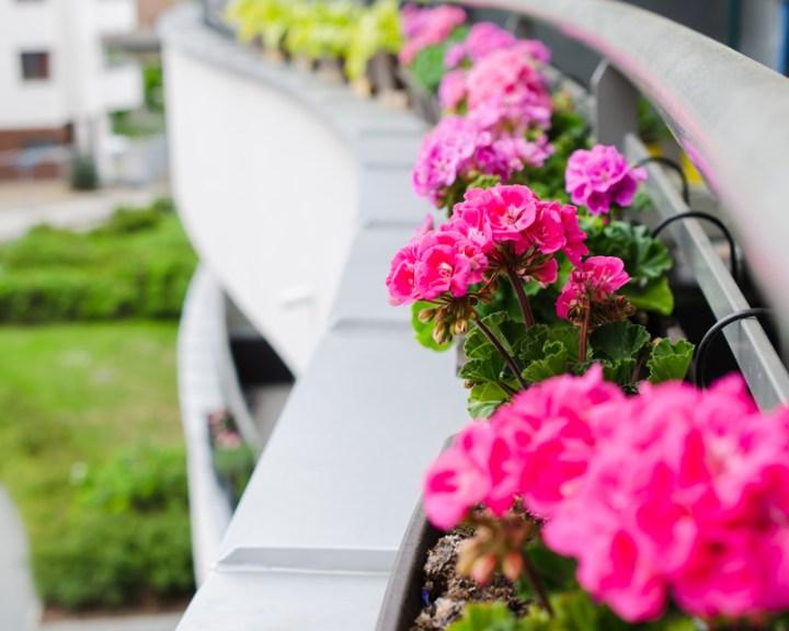 Balcony Railing Flower Planters