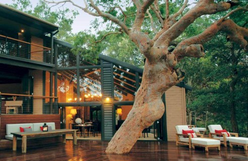 Build a deck around a tree