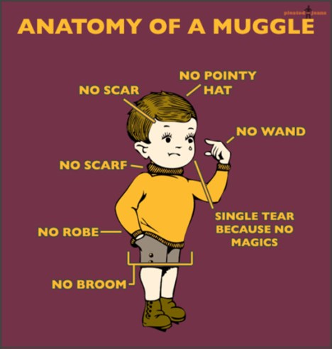 Anatomy-of-a-Muggle-POLYWOOD-Blog-Buzzfeed