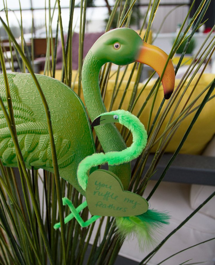 Poly-with-Green-Flamingo-Valentine-800