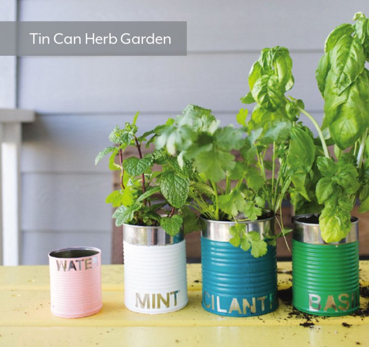 DIY-Tin-Can-Herb-Garden