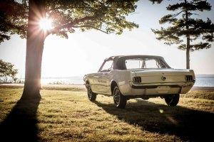 The 1964.5 World's Fair Mustang