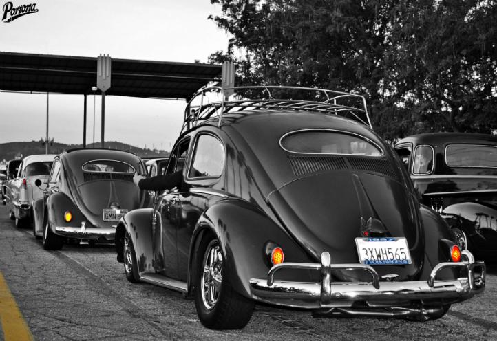 Vintage VW Bugs
