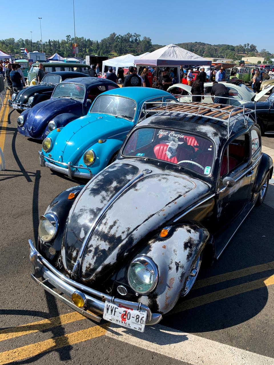 Vintage VW Bug Line Up