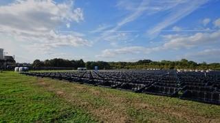 Start bouw grootste zonnepark van Limburg op Chemelot terrein