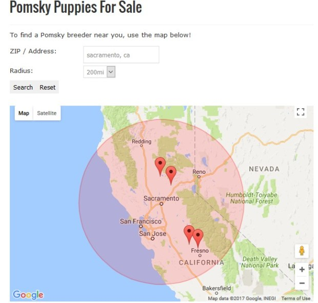 Interactive google map showing Pomsky Breeders for sale United States