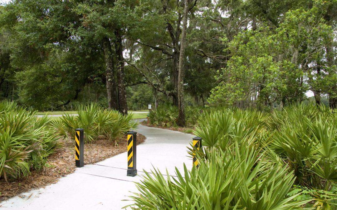 The Island Trail - St. Simon's Island, GA