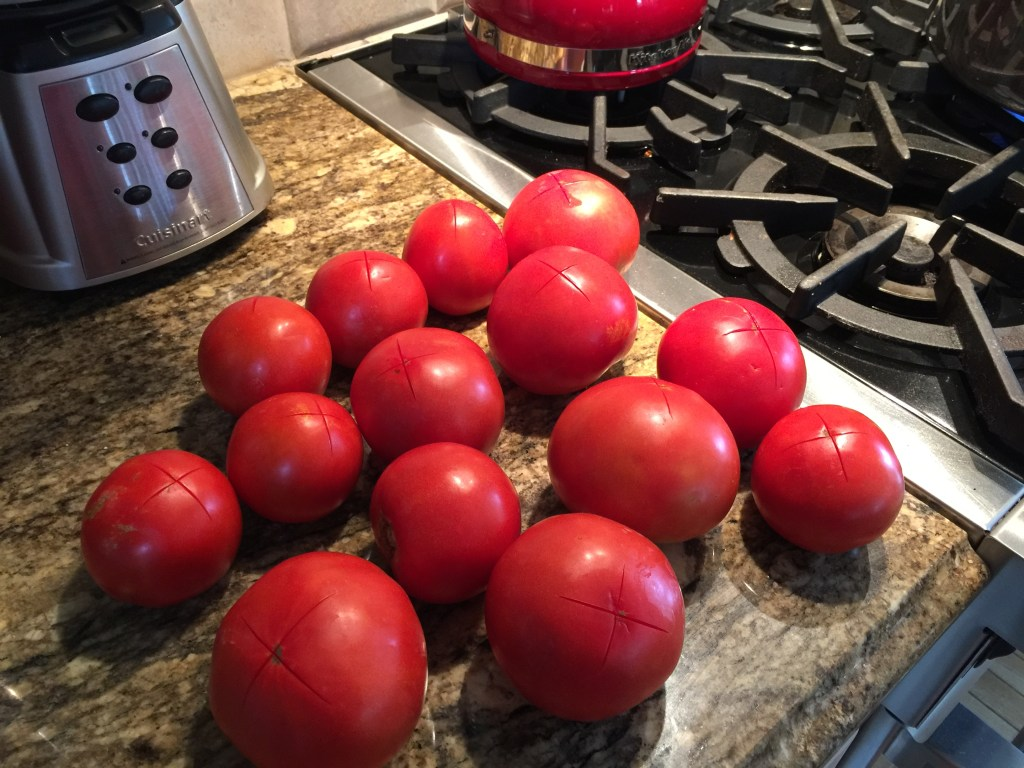 """Freezer pasta sauce: How to peel a tomato - first cut an """"X"""" in the bottom."""