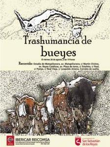 Fiestas en honor del Santísimo Cristo de los Remedios 2016 | San Sebastián de los Reyes | Comunidad de Madrid | Transhumancia de bueyes