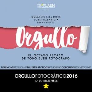 4º Día del Orgullo Fotográfico 'Too Many Flash'   Sábado 17 de diciembre de 2016   Chamberí - Madrid   Cartel
