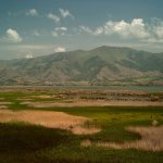 Lake Prespa Grassland