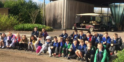 Year 3 National Botanic Gardens Part 2