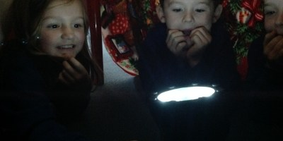 Light Investigation in Year 2