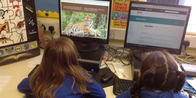 Research Skills in Year 2