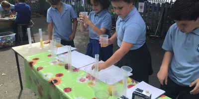 Fruit Smoothies in Year 3