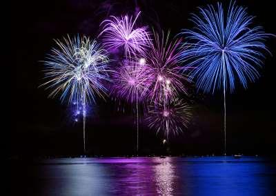 How to Help Your Pets On Holidays Involving Fireworks And With Other Loud Noises-Blog Post 1